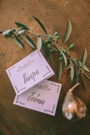 Κάρτες με θέμα την ελιά