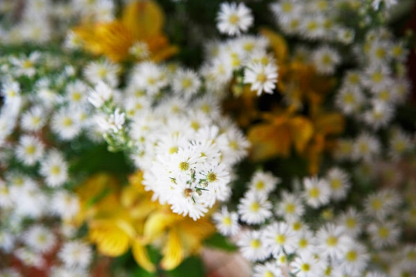 στολισμος-εκκλησιας-λουλουδια-ιδεες-1