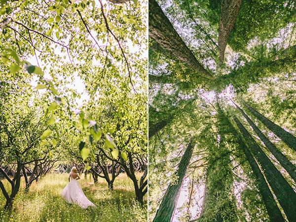 redwood-γαμος