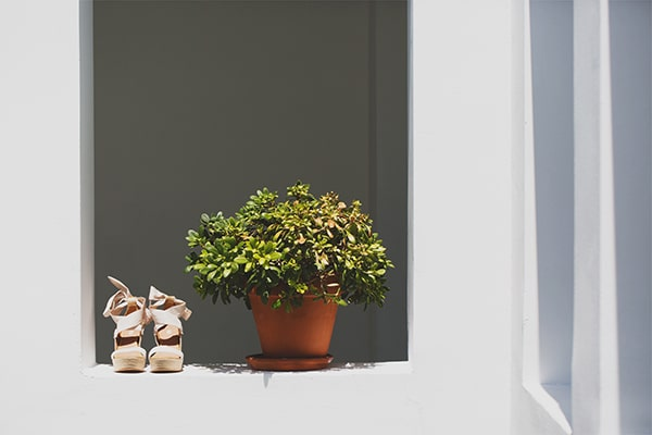 wedding-spetses (6)