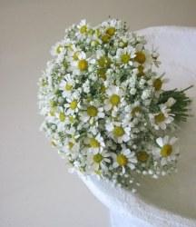 Ανθοδεσμη νυφης με γυψοφιλη