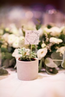 Μπομπονιερα γαμου – γλαστρα με παχυφυτο