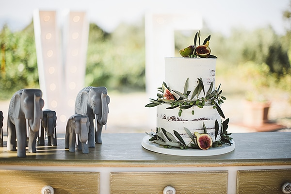 rustic-vineyard-wedding-corfu_21